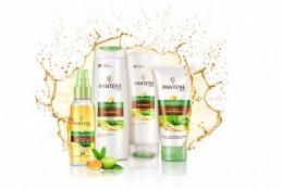 Noua gama Pantene Oil Therapy cu ulei de argan marocan