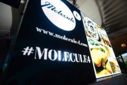 Concentratul de moda romaneasca: 4 ani de Molecule-F